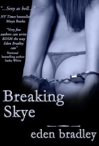 breakingskycover